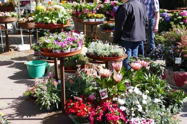 Frühlingsmarkt-2018-13